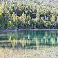 Tree covered hillside reflecting in the still waters of Lake McDonald in early morning. Glacier National Park, Montana