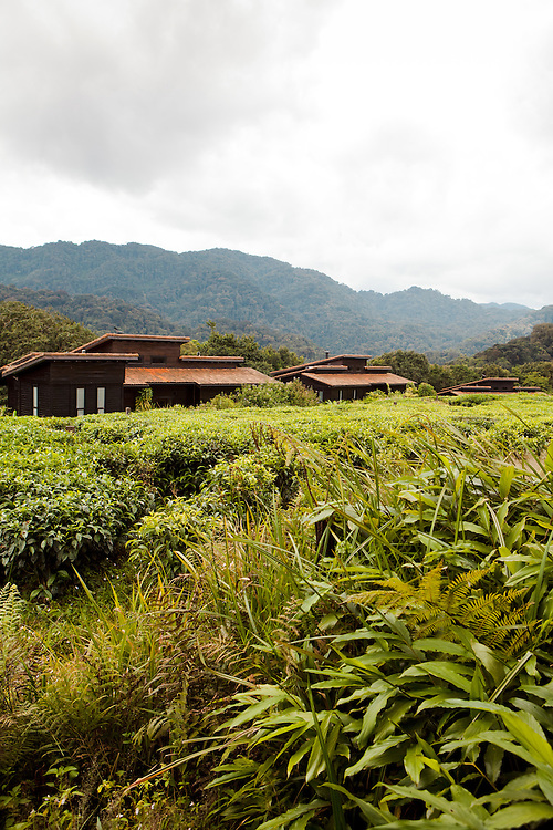Nyungwe Forest Lodge, Rwanda