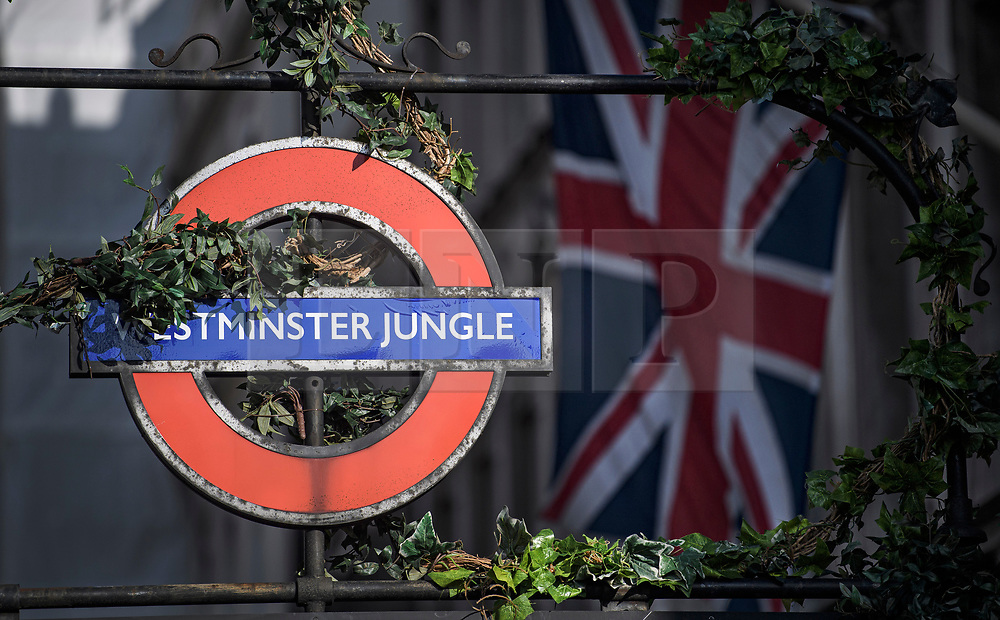 "© Licensed to London News Pictures. 22/10/2019. London, UK. The sign for Westminster Underground station is changed to read ""WESTMINSTER JUNGLE"" as part of a promotion, on the day that MPs will vote on a reading of the Brexit Withdrawal Agreement Bill.  Last week Parliament sat on a Saturday for the first time since 1982, but failed to vote on Boris Johnson's new Brexit deal. Photo credit: Ben Cawthra/LNP"