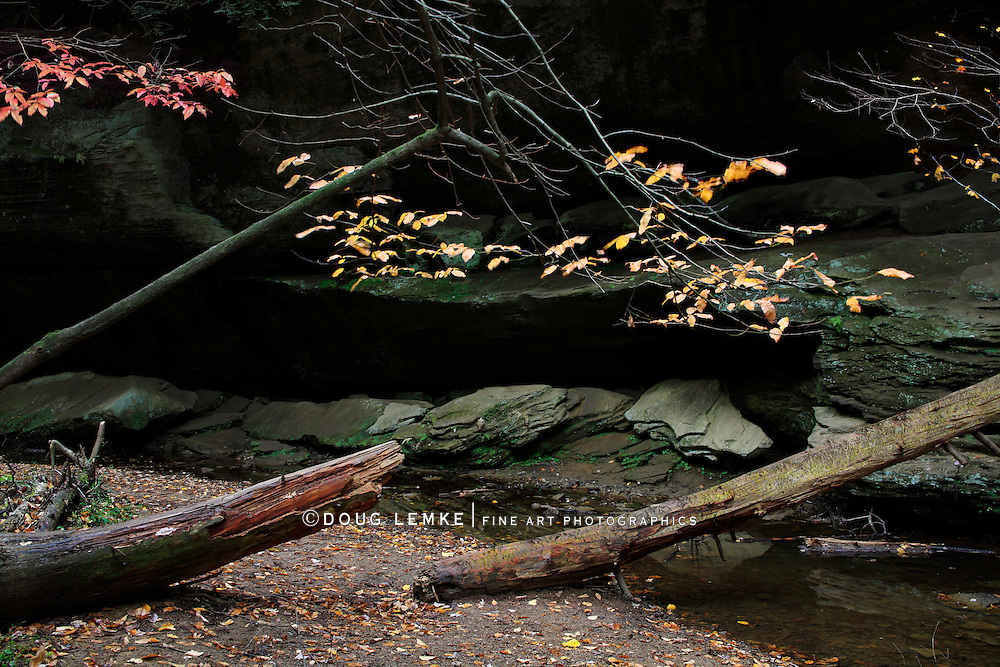 Water F;owing Through A Dark Gorge During Autumn In The Scenic Old Man's Cave State Park Of Central Ohio, Hocking Hills Region, USA