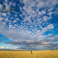 man in greeen jacket hiking though the prairie of eastern montana south of ekalaka montana