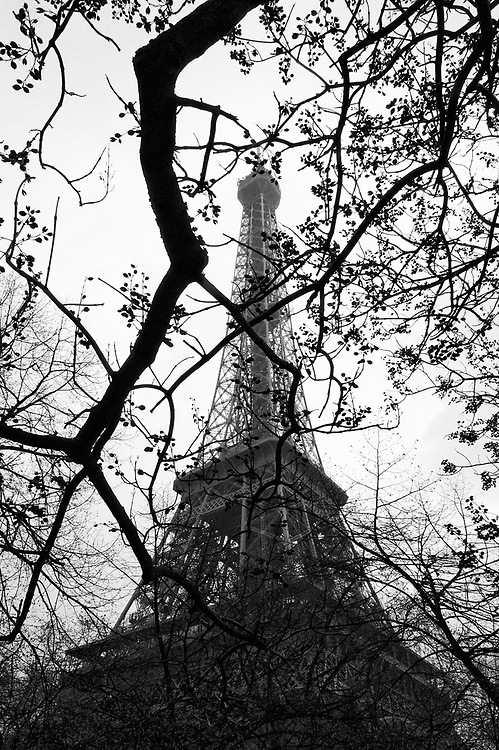 The Eiffel Tower in early spring.