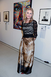 DONNA AIR at the Macmillan De'Longhi Art Auction 2013 held at the Royal College of Art, London on 23rd September 2013.