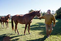 Lauwers Yves, (BEL)<br /> à gauche = Harrison des Hayettes, mâle de 2 ans par Jenson van't Meulenhof & Ryonne des Hayettes Z, c'est un frère utérin de Ryan des Hayettes.<br /> Hayettes.Haras des Layettes - Falaën  2015<br /> © Hippo Foto - Dirk Caremans<br /> 02/10/15
