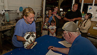 A first time in show for Rachel Fife of Northfield as she demonstrates handling skills of her lop rabbit to Judge Wayne Hall at the Belmont 4H Fair Saturday afternoon.   (Karen Bobotas/for the Laconia Daily Sun)