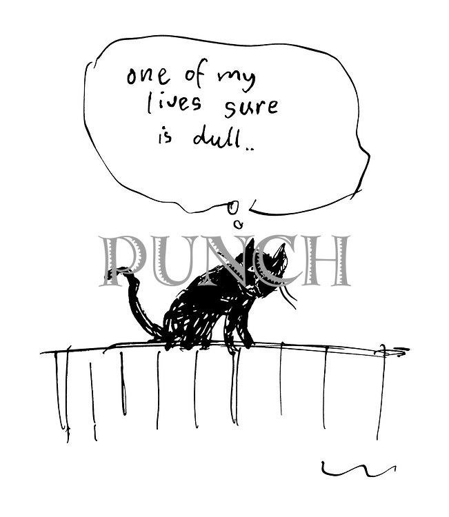 'One of my lives sure is dull'
