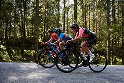 Katherine Maine (CAN), Lourdes Oyarbide (ESP) and Femke Markus (NED) during Ladies Tour of Norway 2019 - Stage 4, a 154 km road race from Svinesund to Halden, Norway on August 25, 2019. Photo by Sean Robinson/velofocus.com