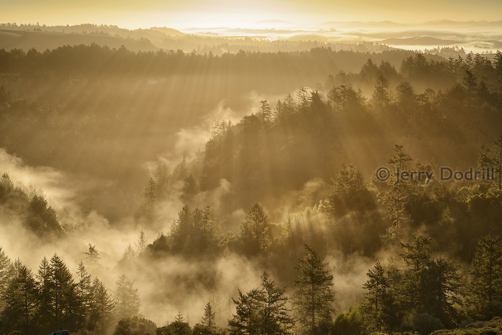 Winter Sunrise over the California Coast Range in Sonoma County near Occidental, California