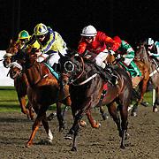 Honourable Knight and David Probert winning the 7.10 race