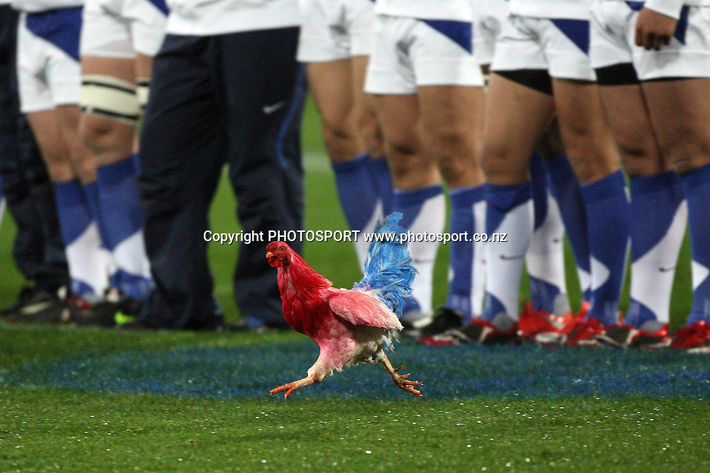 A French coloured hen or le coq is let loose to invade  the pitch before kick off.<br />