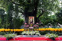 BANGKOK, THAILAND - October 26, 2017: A large tree adorned with flowers and a portrait of the late king in the Old Town of Bangkok, Thailand. Hundreds of thousands of people, dressed in black, have gathered in Bangkok over a year after the death of Thailand's popular King Bhumibol Adulyadej.  The five-day royal cremation ceremony is taking place between October 25-29 in Bangkok's historic Grand Palace and the Sanam Luang area.