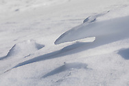 The wind has undercut and sculpted an interesting cantilevered design in this miniature pointed snow drift.