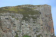 cliff at Torr Head, Norther Ireland