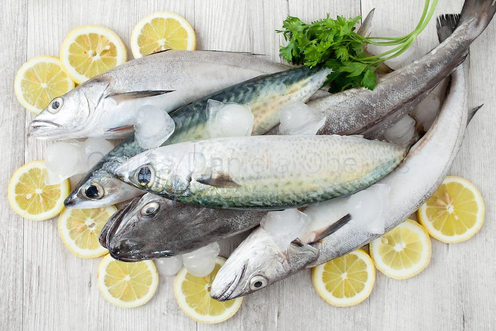 Raw fresh mackerel and codfish with ice, lemon slices and parsley, flat lay.