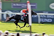 BOMB PROOF (3) ridden by Fankie Dettori and trained by Jeremy Noseda winning the The British Stallion Studs EBF Novice Stakes over 5f (£20,000)    during the first day of the Dante Festival at York Racecourse, York, United Kingdom on 15 May 2019.