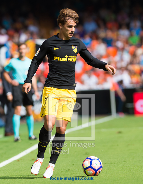 Antoine Griezmann of Atletico Madrid during the La Liga match at Mestalla, Valencia<br /> Picture by Maria Jose Segovia/Focus Images Ltd +34 660052291<br /> 02/10/2016