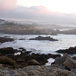 California Coast, Pacific Grove