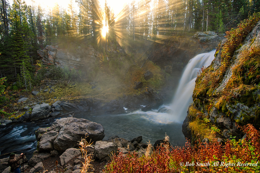 Moose Falls in Yellowstone National Park