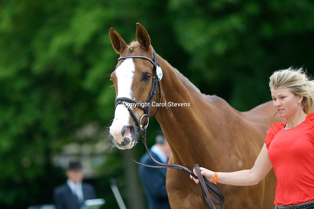 Jonelle Richards (New Zealand) and Mrs Lucy Sangster &amp; Miss Eliza Sangster's Mere Oak<br />