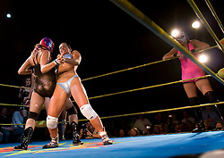 Girl Fight: women take on wrestling at Lucha Va Voom