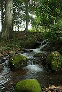 La provincia de Chiriquí, se encuentra ubicada en el sector oeste de Panamá. Esta provincia posee una gran variedad de flora y fauna lo que la convierte en una de los puntos  más importantes para practicar el ecoturismo dentro del país. (Damian Hernandez/Istmophoto)