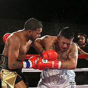 Cesar Seda connects on a punch to the head of Rogelio Casarez during a Fire Fist Boxing Promotions boxing match at the A La Carte Pavilion on Saturday, August 12 , 2017 in Tampa, Florida.  (Alex Menendez via AP)