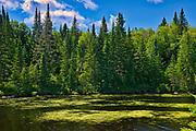Lac des Commissaires<br />Chambord<br />Quebec<br />Canada