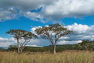 Weenan Nature Reserve