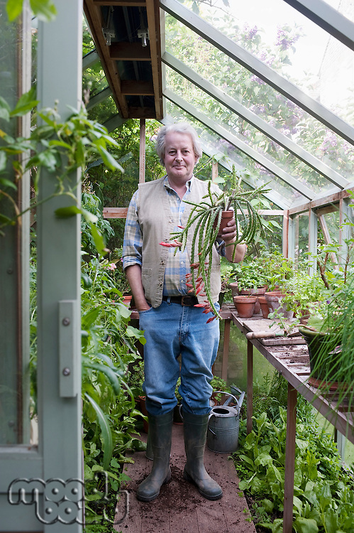 Gardener stands in greenhouse holding potplant