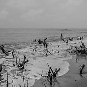 The north coast of Guinea Bissau, a few kilometers from Senegal. From here several ships left with the intention of reaching North Africa.<br /> <br /> La costa norte de Guinea Bissau, a pocos kil&oacute;metros de Senegal. Desde aqu&iacute; varios barcos salieron con la intenci&oacute;n de llegar a &Aacute;frica del Norte.