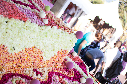 "World Record Flower ""Cupcake"" 35000 flowers, Grasse, France"