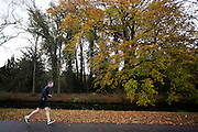 Bij De Bilt is een man aan het hardlopen.<br /> <br /> A man is running near De Bilt.