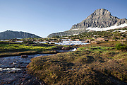 MT00131-00...MONTANA - Renolds Mountain and creek at Logan Pass in Glacier National Park.