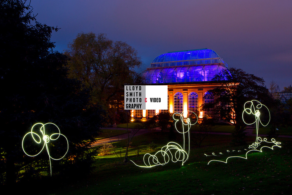 Royal Botanic Gardens Edinburgh Botanic Lights<br /> <br /> In the night garden<br /> <br /> runs until 23 November
