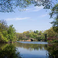 The Pond in Central Park with a view towards Gapstow Bridge.