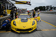 October 1- 3, 2015: Road Atlanta, Petit Le Mans 2015 - Oliver Gavin, Tommy Milner, Corvette Racing C7.R GTLM