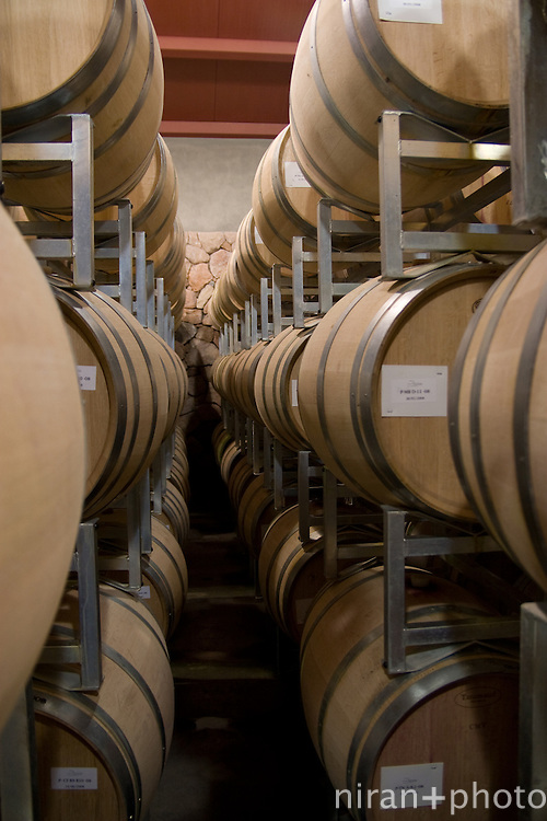 Wine Casks at Mendoza Winery