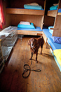 Hunderommet på Schulzhytta i Sylan, Trondhjems Turistforening, Den norske turistforening.