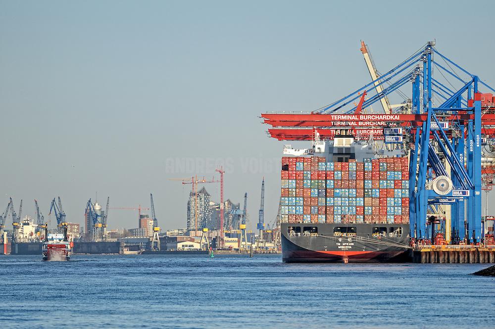 Ein Container-Schiff steht am Terminal Burchardkai. Am Horizont ist die Elbphilharmonie und Blohm + Voss mit Kränen.