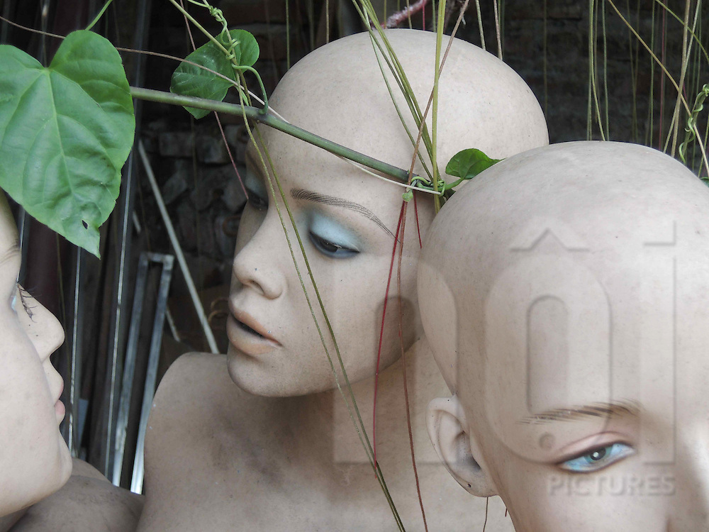 Detail of mannequins left in a yard, Hanoi, Vietnam, Southeast Asia