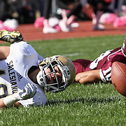 Salesianum wide receiver Griffin Salvo (10) watches the ball in the ground in the end zone Saturday, Oct. 17, 2015 at Concord Stadium in Wilmington.