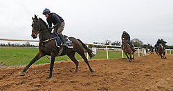 Apples Jade and Keith Donoghue on the gallops during the stable visit to Gordon Elliott's yard at Cullentra House, County Meath.