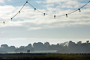 © Licensed to London News Pictures. 01/12/2013. Southwold, UK. Dog walkers make their way along a path. The first of December was greeted by a brisk sunny morning at the harbour on the River Blyth in Southwold, Suffolk today, 1st December 2013. Photo credit : Stephen Simpson/LNP