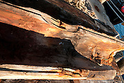 Aged planks and beams on a fishing pier, Gloucester, Massachusetts