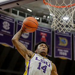 Jan 8, 2019; Baton Rouge, LA, USA; LSU Tigers guard Marlon Taylor (14) dunks against the Alabama Crimson Tide during the second half at the Maravich Assembly Center. Mandatory Credit: Derick E. Hingle-USA TODAY Sports