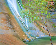 Calf Creek Falls, Escalante Staircase National Monument, Utah