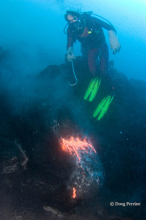 lava diver doug perrine photography