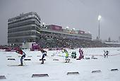 Biathlon 15km Mass Start, Mens