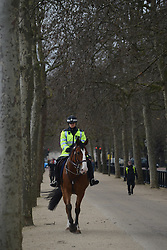 © Licensed to London News Pictures. 18/04/2013. London, UK. A mounted Police Officer patrols at The Mall, the location for the London Marathon finish line, on April 18, 2013 in London. The London Marathon will be held on Sunday April 21. Photo credit : Peter Kollanyi/LNP
