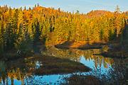 Meandering river in morning light<br />Lake Superior Provincial Park<br />Ontario<br />Canada